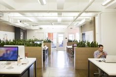 day-one-agency-office-design-12