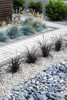 If you are looking for Minimalist Japanese Garden Ideas, You come to the right place. Below are the Minimalist Japanese Garden Ideas. This post about Minimalist Japanese Garden Ideas was posted under . Back Gardens, Small Gardens, Outdoor Gardens, Small Japanese Garden, Japanese Garden Design, Minimalist Garden, Gravel Garden, Backyard Garden Design, Desert Backyard