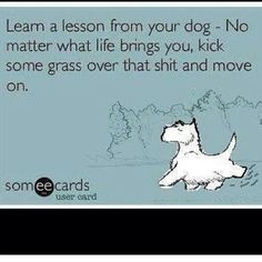 #LifeQuotes Learn a lesson from your dog - No matter what life brings you, kick some grass over that shit and move on.