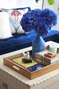 Erin Gates Design - living rooms - living room, indigo blue tufted velvet sofa, trunk coffee table, wood tray, indigo blue vase, books, styled coffee table