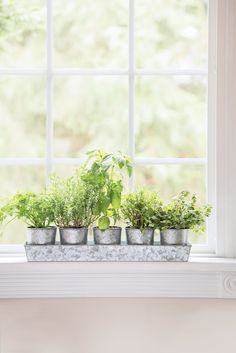 Planters with rectangular tray window sill decor, kitchen window sill, he. Window Sill Decor, Kitchen Window Sill, Kitchen Garden Window, Plants On Window Sill, Window Ideas, Herb Garden In Kitchen, Kitchen Herbs, Plants In Kitchen, Herbs Garden