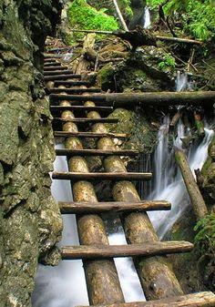 Dedinky Garden Bridge, National Parks, Scenery, Sweet Home, Outdoor Structures, Landscape, Nature, Naturaleza, House Beautiful