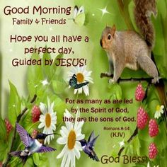 Good Morning, I pray that you have a safe and blessed day!!
