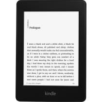 Grandma? Here is on of my five things that I want!! 2013 Paper white kindle at best buy for only $119!! And maybe a case and some book on it?