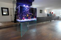 Aquarium schlafzimmer ~ Black aquarium for the office aquariums fish tanks and aquarium