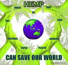 Hemp Can Save Our World Hemp Recipe, Car Fuel, Plant Species, Cannabis Oil, Green Man, Hemp Oil, Our World, Medical Marijuana, Climate Change