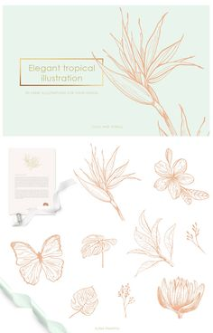 Warm climate of tropics, bright colours and subtle lines were absorbed into my new elegant set) Illustrations of tropical flowers, butterflies, coconuts, palm Pattern Illustration, Botanical Illustration, Graphic Illustration, Motif Tropical, Tropical Pattern, Tropical Flowers, Tropical Design, Graphisches Design, Pattern Design