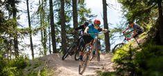 Mtb, Austria, Trail, Europe, Underworld, Tourism, Adventure, Mountain Biking