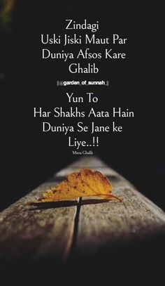 Ispirational Quotes, Hindi Quotes Images, Quotable Quotes, Poetry Quotes, Love Pain Quotes, First Love Quotes, Good Life Quotes, Muslim Quotes, Islamic Quotes