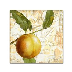 Trademark Art 'Cafe d'Or V' by Color Bakery Graphic Art on Wrapped Canvas Size: