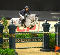 Laura Kraut and Cedric at the 2014 National Horse Show, Lexington KY