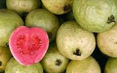 Food and Thrift: Pasteles de Guayaba-(Cuban Guava Pastries) Exotic Fruit, Tropical Fruits, Exotic Food, Guava Fruit Benefits, Guava Pastry, Strawberry Guava, Pineapple Guava, Pink Guava, Food Facts
