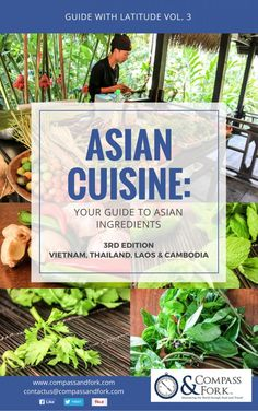 ASIAN CUISINE: GUIDE TO ASIAN INGREDIENTS
