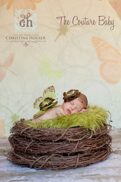 Butterfly wings and headband ~ Green and Brown for newborns :D