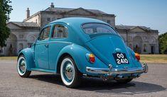 Volkswagen Beetles, Vw Bugs, Simile, Large Women, Volvo, Antique Cars, Vans, Beetle Car, Vintage Cars