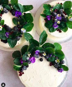 Panna Cotta, Cake, Ethnic Recipes, Desserts, Food, Tailgate Desserts, Dulce De Leche, Deserts, Kuchen