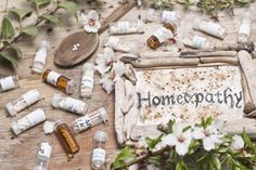 The popularity and demand of homeopathy  in Delhi is increasing.