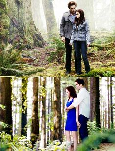 First Twilight When Bella finds out Edward is a vampire to the last Twilight where Bella is also a vampire