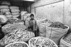 Bangladeshi boy among big sackcloth bags full of dry fish for sale at the Karwan Dry Fish Market (Bazar), Dhaka, Bangladesh, Indian Sub-Continent, Asia
