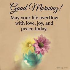 Good Morning Have Peace Today