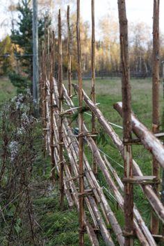 So beautiful!! Riukuaita, bush fence, branches
