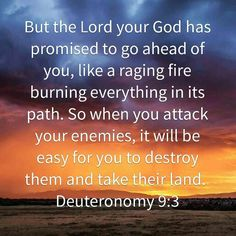 God is with you in the battle...You are never alone. Keep the faith and watch God go into battle on your behalf... #blogthrudabible  #bloggingthroughDeuteronomy  #bloggingthroughthebible  #goodmorninggirls  #womenlivingwell