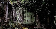 The darks and lights of Cambodia Angkor Wat, Cambodia, Light In The Dark, Printmaking, The Darkest, Sculpture, Lights, Drawings, Plants
