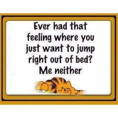 Hilarious quote for the weekend! For more funny life quotes and short jokes visit www. Garfield Quotes, Garfield And Odie, Garfield Pictures, Garfield Comics, Garfield Cartoon, Funny Pictures, Funny Quotes About Life, Life Quotes, Funny Life