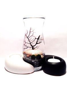 Marimo Terrarium Yin and Yang Zen Garden Candle Set on Etsy, $45.00