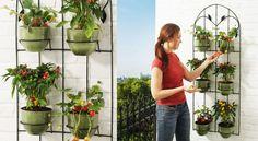 Un mini potager en jardin suspenduVous souhaitez cultiver vos fruits et légumes mais, en appartement,, vous n'avez pas assez d'espace sur votre balcon pour des jardinières ou des bacs ? Nous avons la solution ! Bricolez un mini potager mural, à positionner sur le mur le mieux exposé. Et à vous les belles récoltes !