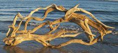 driftwood - Buscar con Google