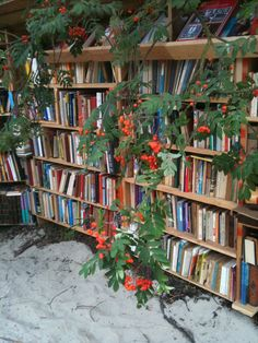 Beach library in the autumn #triintamm