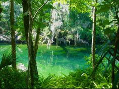 Anastasia State Park:    Floridas 171 state parks and trails. Family. Friends. Fun. Prices you can afford, experiences you cant afford to miss. Get a little park on ya!