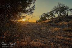 Bon dia (Good morning) by Quim Rafel on 500px