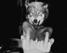 Wolfhead.