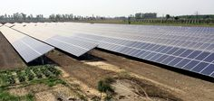 Youth Akali Dal(YAD) is the youth wing of an Indian regional political party-Shiromani Akali Dal. Cabinet Minister, Solar Projects, Political Party, Green Cleaning, Solar Power, Acre, Outdoor Decor, Solar Energy