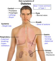Symptoms of Diabetes You want to know more about Diabetes? Great video right here http://www.indetails.com/4643/what-diabetes-is/