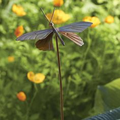 Butterfly Garden Decor Stake Perfect for a flowerbed or potted planting! Our Butterfly Staked Garden Ornament adds a cheerful touch while reminding you of your favo Garden Stakes, Herb Garden, Garden Art, Garden Tools, Garden Design, Garden Ideas, Garden Crafts, Garden Supplies, Garden Inspiration