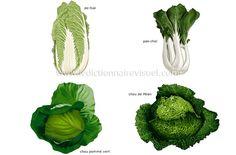 légumes feuilles - Recherche Google