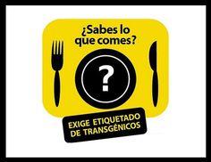 ¿Qué marcas y productos utilizan transgénicos en México y cuáles no?