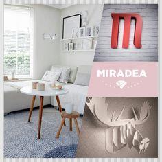 Fehér rénszarvas trófea | Miradea