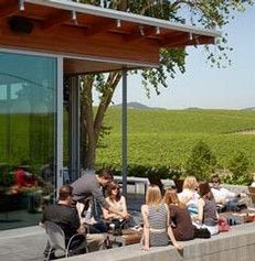 Cuvaison Estate's Carneros tasting room is surrounded by the waves of the estate vineyard; one of the best views around.