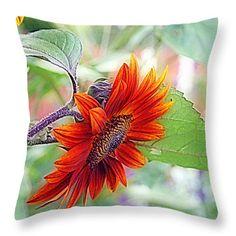 Red Sunflower Throw Pillow by Kay Novy #pillow #sunflower #red #beautiful #nature #photography #KayNovy #kkphoto1