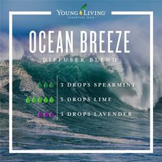 Young Living is the World Leader in Essential Oils. We offer therapeutic-grade oils for your natural lifestyle. Authentic essential oils for every household. Essential Oils Guide, Essential Oil Uses, Doterra Essential Oils, Young Living Essential Oils, Yl Oils, Essential Oil Combinations, Spearmint Essential Oil, Essential Oil Diffuser Blends, Doterra Diffuser