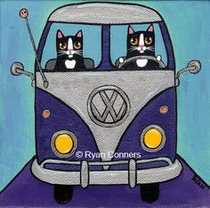 cat in a bus - Google Search