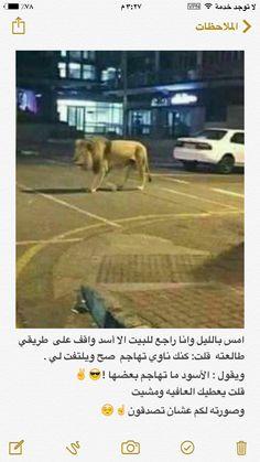 عشان تصدقون