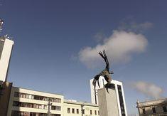 Bolivar Condor, Plaza de Bolivar. Manizales, Caldas Condor, Plaza, Statue Of Liberty, Travel, Statue Of Liberty Facts, Viajes, Statue Of Libery, Destinations, Traveling
