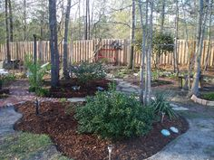 Been working the past 2 weeks weeding and mulching, wow spring has sprung :)