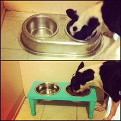 DIY Raised Dog Bowls. Looks like is was a foot rest or stool.