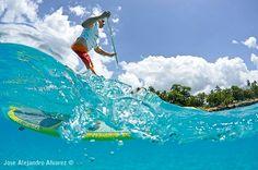Carib Wind Cabarete SUP day with Reef Check Check Dominican Republic. Photo taken by Jose Alejandro Alvarez at La Caleta Beach, Dominican Republic. Sup Surf, Dominican Republic, Paddle Boarding, Waves, Beach, Check, Surfing, The Beach, Beaches